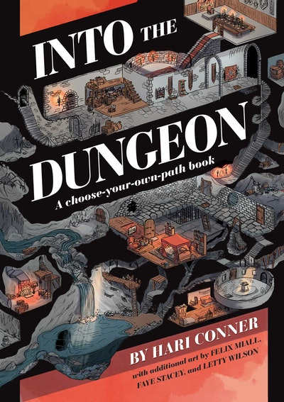 'Into the Dungeon' by Hari Conner