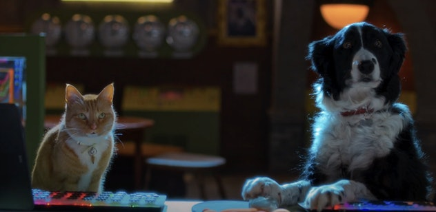 'Cats & Dogs: Paws Unite!' is a movie from 2020.