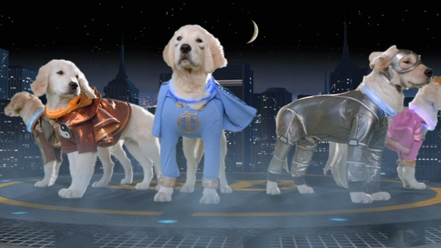 The Buddies movies are a spin off from the popular Air Bud.