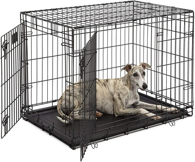 MidWest Homes For Pets Lifestages Double Door Collapsible Wire Dog Crate