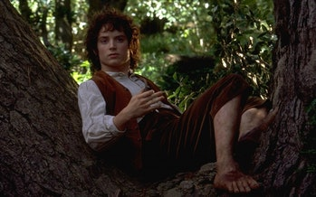 Elijah Wood as Frodo Baggins in Lord of the Rings: Fellowship of the Ring