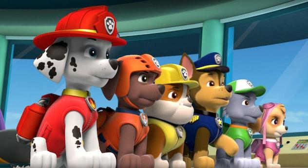 Paw Patrol originally aired on Nick Jr.