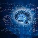 Human brain and mathematical formulas