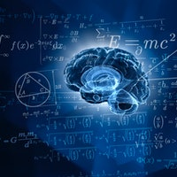 """Are you born with a """"math brain""""? What neurotransmitters can reveal"""