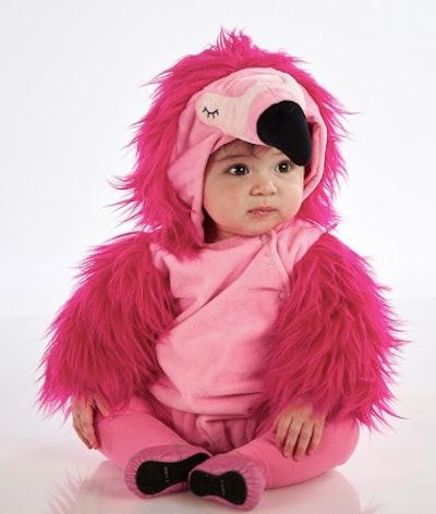A baby flamingo costume