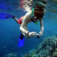 The 4 Best Cheap Underwater Cameras