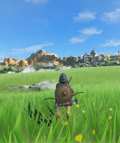 A mod for Legend of Zelda: Breath of the Wild. Video game. Gaming. Games. Nintendo Switch. Wii U. Mo...