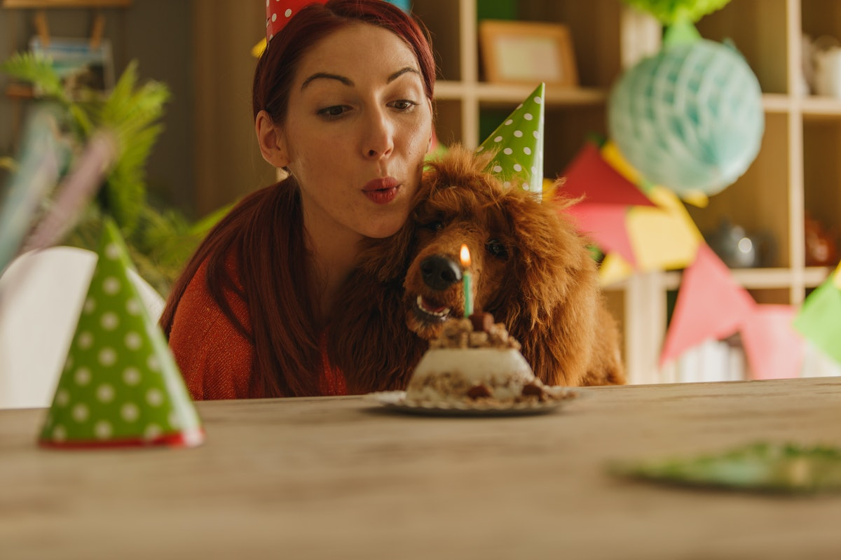 Young woman blowing out the candles on her dog's cake before posting on Instagram with dog birthday ...