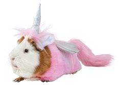Guinea pig in unicorn fairy costume from PetsMart