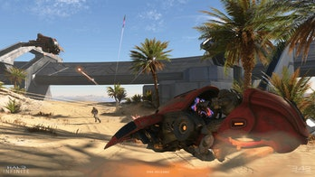 halo infinite multiplayer vehicle