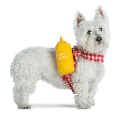 small dog in mustard costume