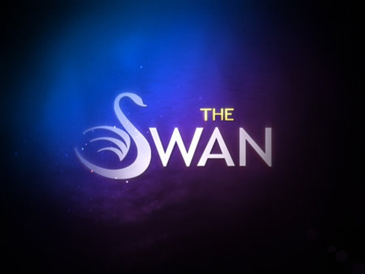 The logo of The Swan.