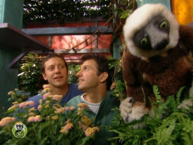 Zoboomafoo first aired on PBS Kids