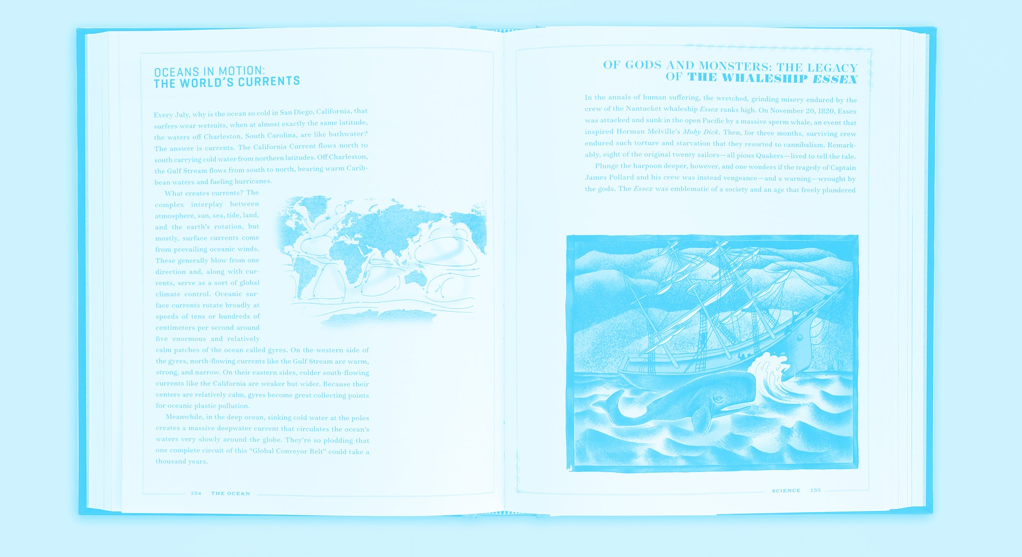 A spread from the book The Ocean