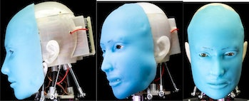 Eva is made using a 3D printed and assembled skull with a blue, flesh-like face mask placed on top.