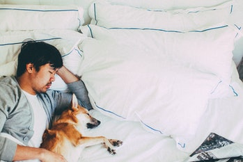 Man sleeping in bed with dog
