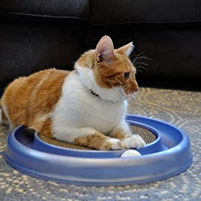 Bergan Turboscratcher Cat Toy