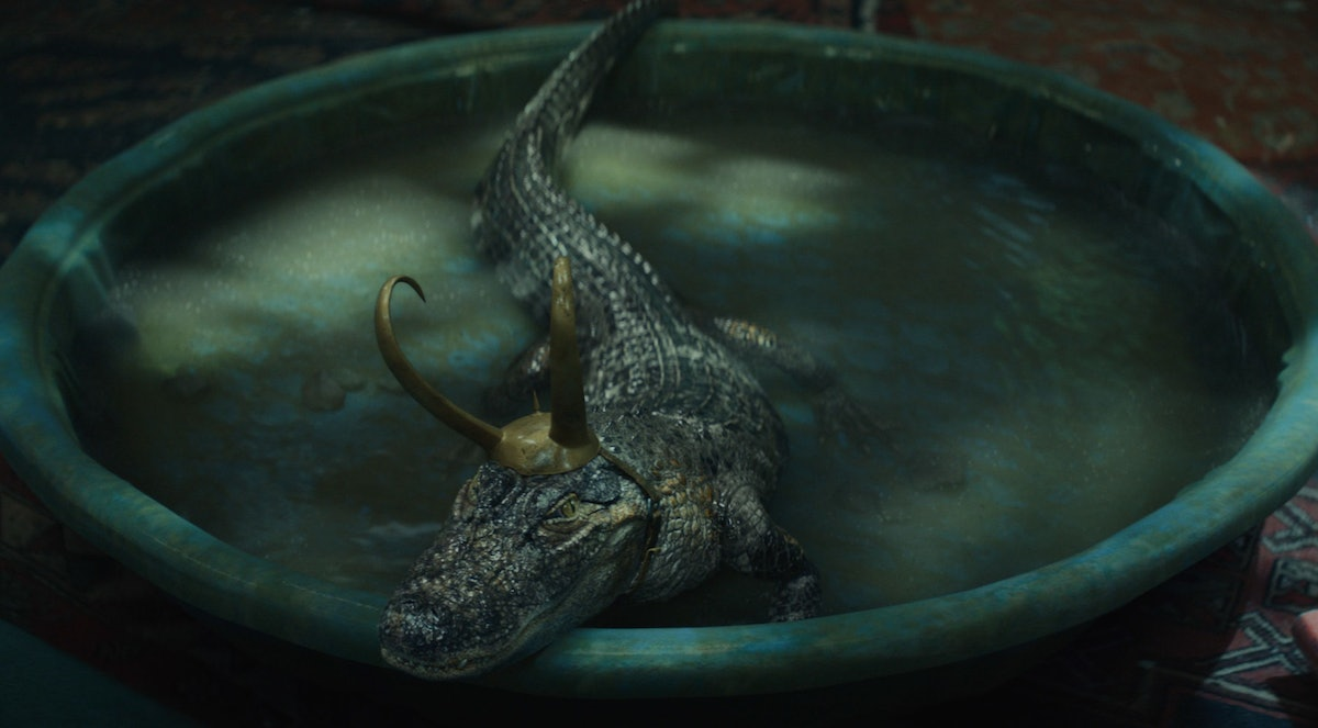 The Alligator Loki in 'Loki' is known as Lokigator to his fans