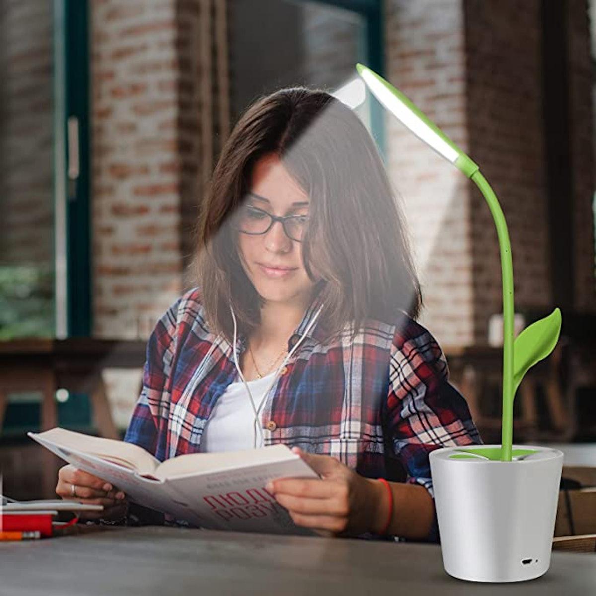 iEGrow Flexible USB LED Desk Lamp