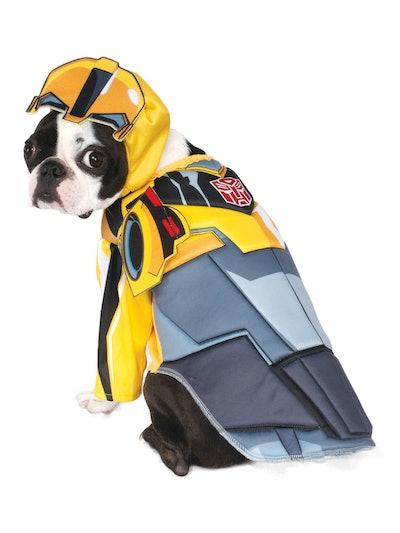 dog in Transformer bumble bee halloween costume