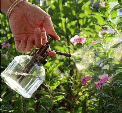 OFFIDIX Glass Watering Spray Bottle