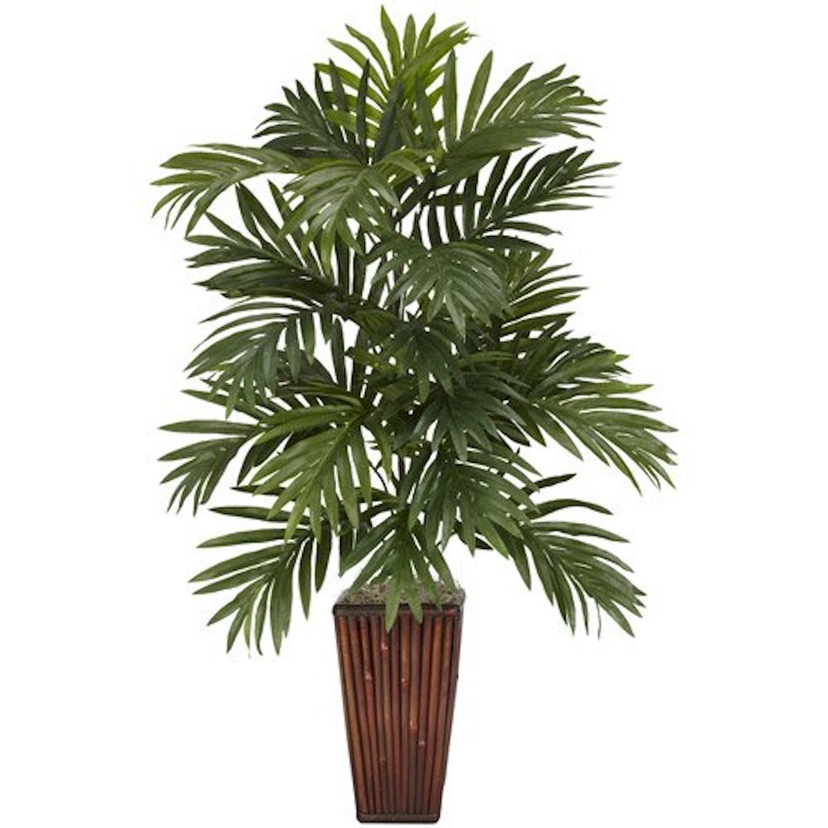 Areca Palm with Bamboo Vase