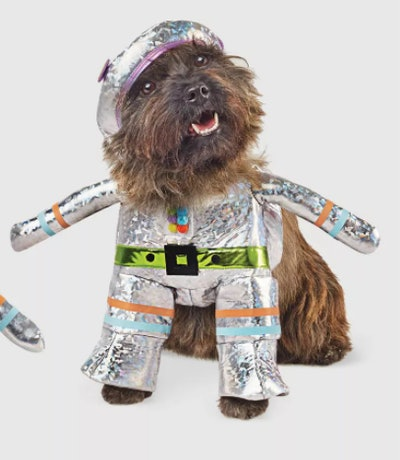 dog dressed in a silver robot costume for Halloween