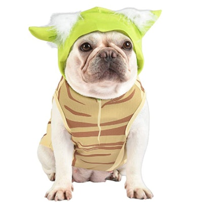 dog dressed in Baby Yoda Halloween costume