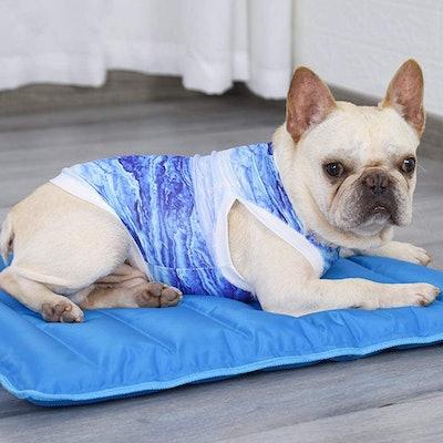 Dociote Dog Cooling Vest