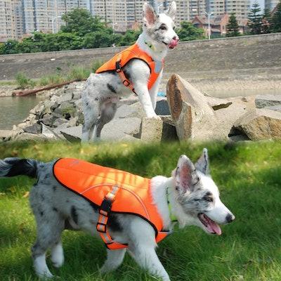 Smartelf Dog Cooling Vest