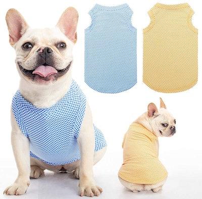 SCENEREAL Dog Cooling Shirt (2-Pack)
