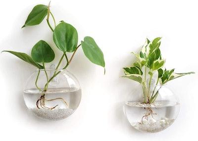 Mkono Hanging Glass Terrariums (Set of 2)