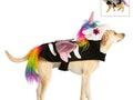 PetSmart's 2021 Halloween costumes include pieces that work for both cats and dogs.