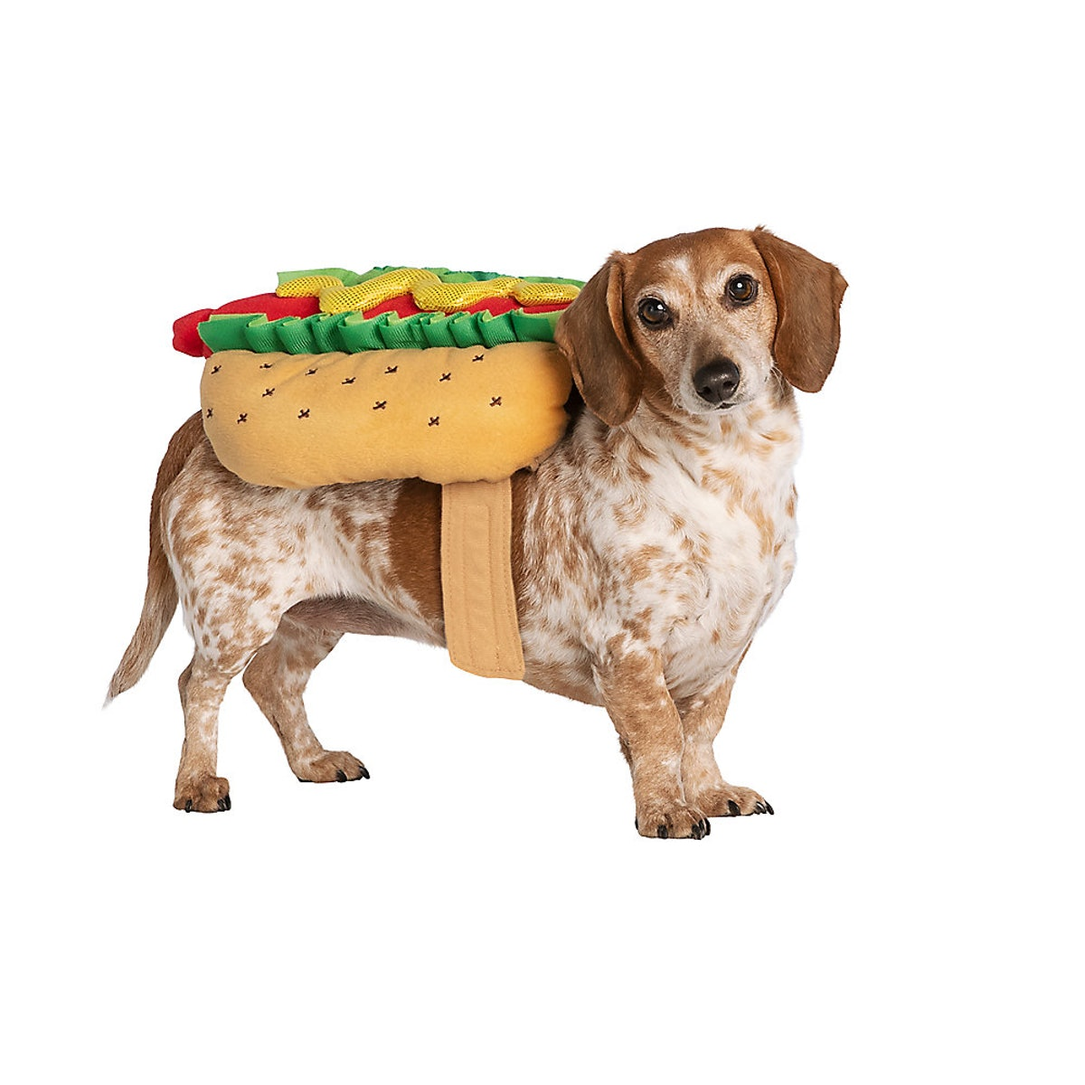Thrills & Chills Halloween Hot Dog Cat & Dog Costume