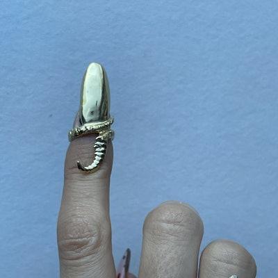 Nail Art Spine