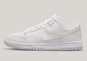 "Nike ""Move to Zero"" Dunk Low sneaker"