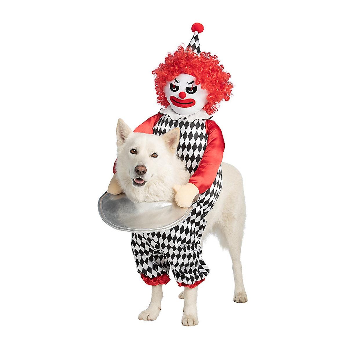 Thrills & Chills Halloween Clown Cat & Dog Costume