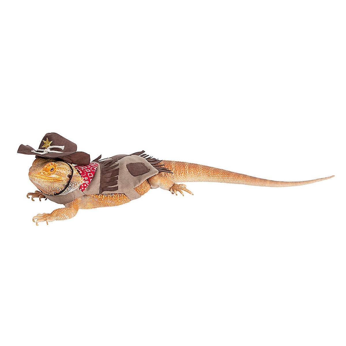 Thrills & Chills Cowboy Reptile Costume