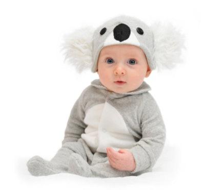 Baby dressed as a koala