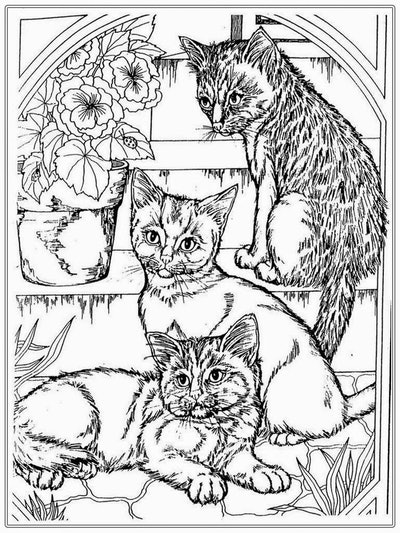Cat coloring page; realistic picture of cats playing