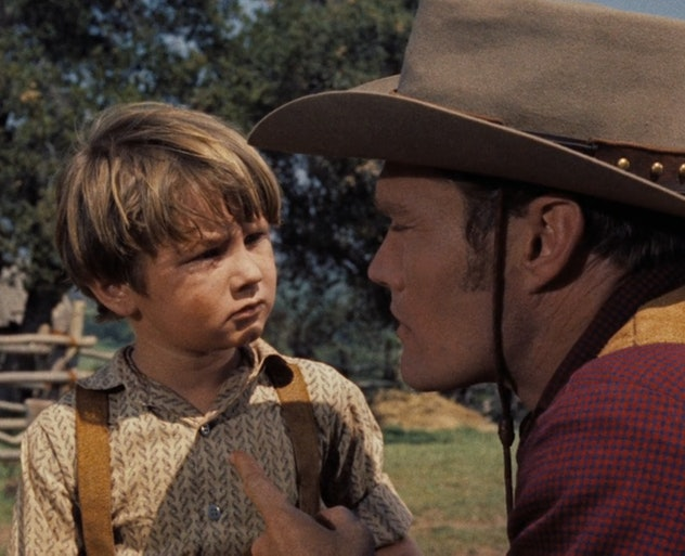 Old Yeller has become a term synonymous with sad endings.