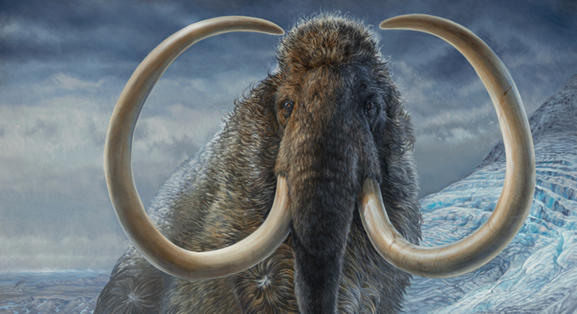 A painting of a woolly mammoth