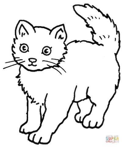 Cat coloring page; cartoon cat