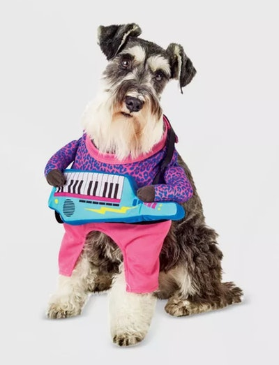 Keyboard Guitarist Frontal Dog and Cat Costume