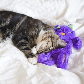 Petstages Comforting Cat Toy Purr Pillow