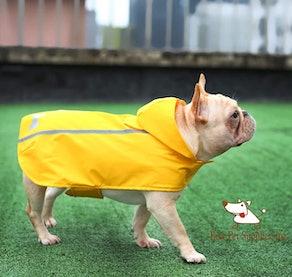 Best Pet Supplies Voyager Dog Rain Coat