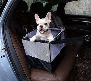 Amazon Basics Portable Small Pet Carrier