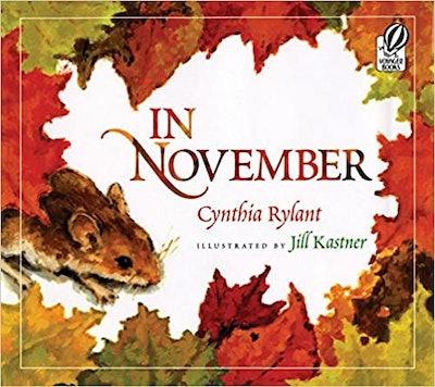 In November book cover