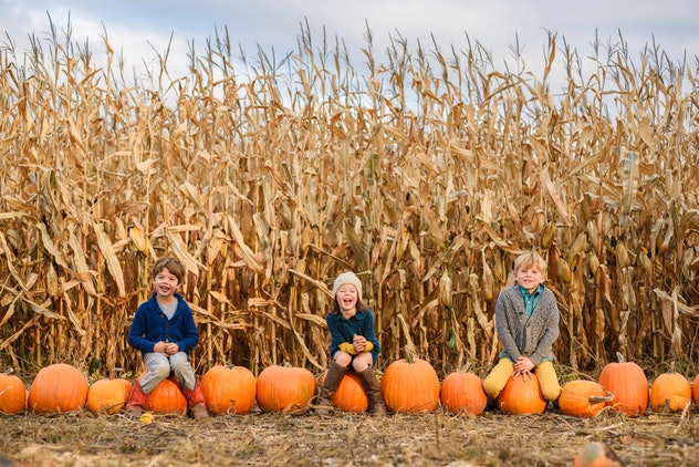 Three kids sitting in front of harvested corn field with a row of pumpkins