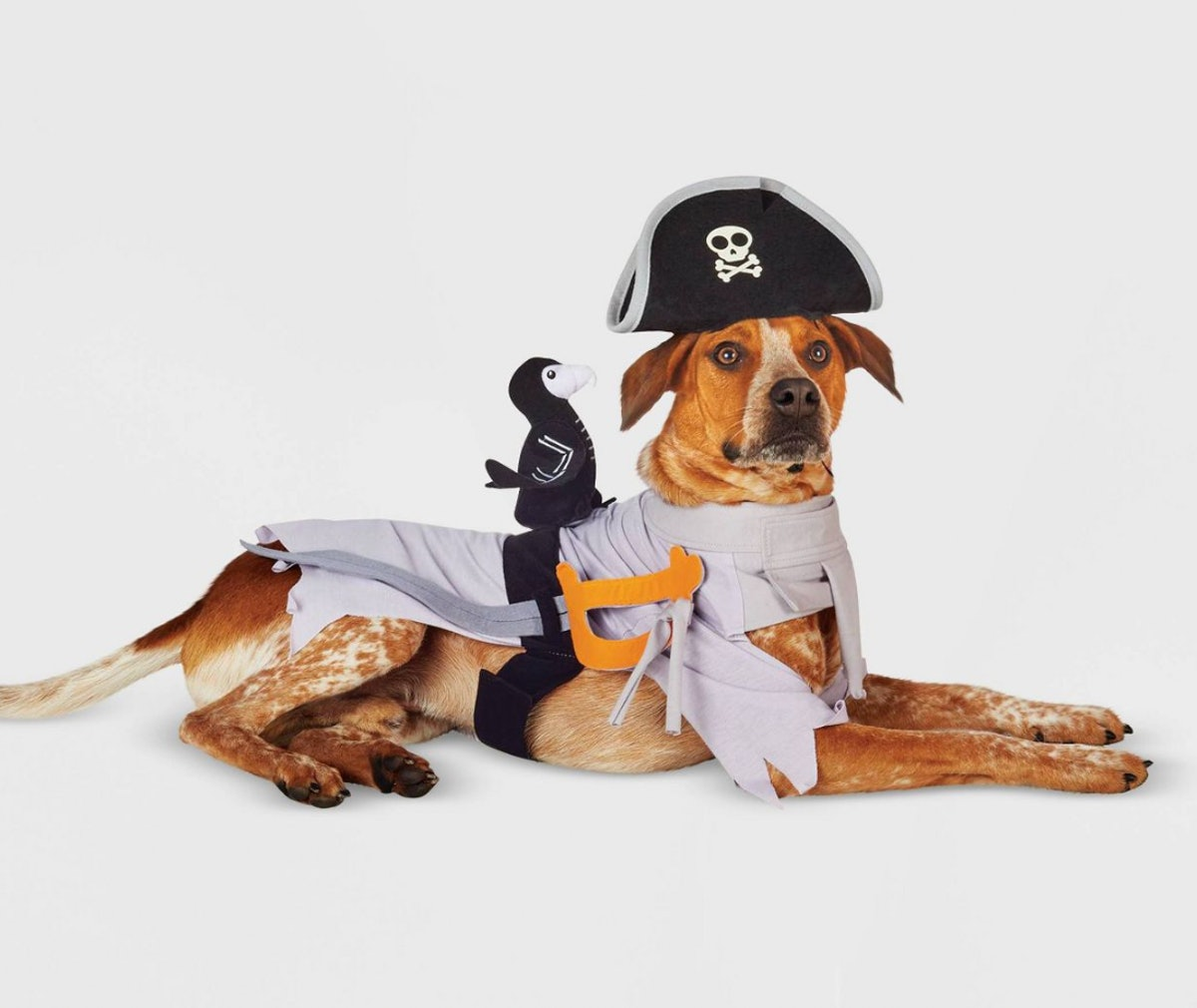 Ghost Pirate LED Dog and Cat Costume